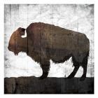 Aged Buffalo
