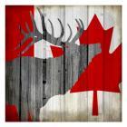 Wildlife Flag 1