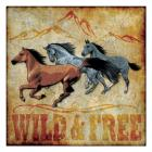Wild and Free 01