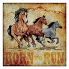 Born to Run 01