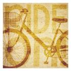Bike Canvas 2