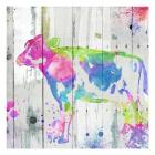 Cow Colorful