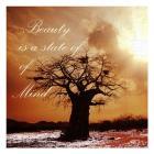 Beauty beyond beauty