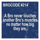 Bro Code 214