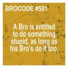 Bro Code 501