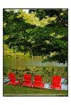 A Family Of Adirondak Chairs