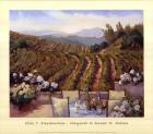 Vineyards to Mount St. Helena