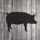Barn Pig