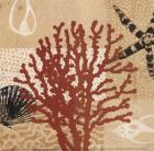 Coral Impressions III
