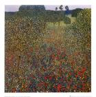 Field of Poppies, c.1907