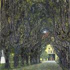 Avenue of Trees in the Park at Schloss Kammer, c.1912