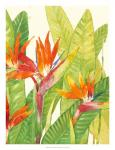 Watercolor Tropical Flowers IV