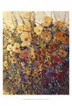 Bright & Bold Flowers II