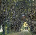 Allee Im Park Von Schloss Ka