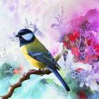 Bird Collection 1