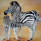 Zebra Bonding
