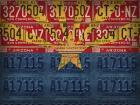 Arizona State Flag License Plates