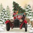 Christmas Tree Classic Car Ride I