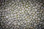 Aerial View of Cobble Stoned Path
