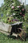 Barrow of Flowers