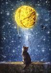 A Yarn of Moon