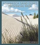 Athabasca Sand Dunes