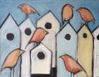 Bird Condos