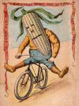 Bike Corn