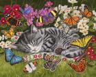 Blanket of Butterflies