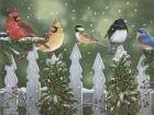 Winter Birds on a Snowy Fence