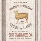 Best Feeds