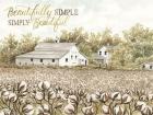 Beautifully Simple Cotton Farm