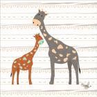 Zoo Animals Giraffes