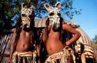 Zulu Zebra Masked Dancers, South Africa