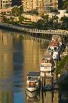 Australia, Brisbane, Brisbane River Marina boats