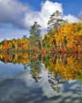 Autumn Scene Of Upper Togue Pond, Maine