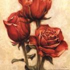 Red Roses I