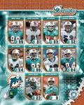2006 - Dolphins Team Composite