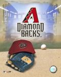 2007 - Diamond Backs Logo