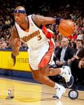 Al Harrington - 2007 Action