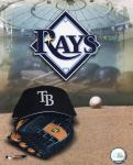 2008 Tampa Bay Rays Team Logo