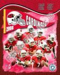 2008 Arizona Cardinals Team Composite