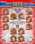 2008 Philadelphia Phillies National League Champions Composite