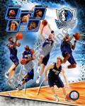 2008-09 Dallas Mavericks Team Composite