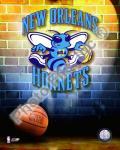 2009 New Orleans Hornets Team Logo