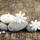 Zen Pebbles 2