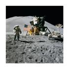 Apollo 15 Lunar Module Pilot James Irwin Salutes the U.S. Flag
