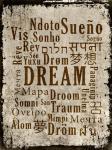 Dream in Multiple Languages