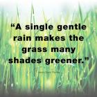 A Single Gentle Rain - Henry Thoreau Quote (Light)