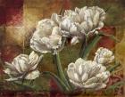 Praise I-Tulips